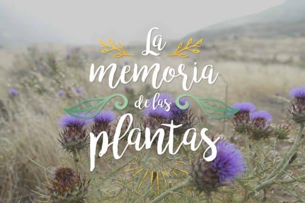 LAS MEMORIAS DE LAS PLANTAS - HORMIGAS PRODUCTORA AUDIOVISUAL