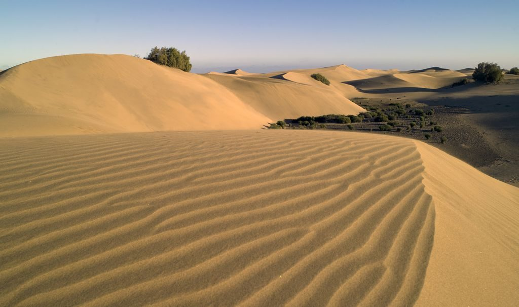 dunes of maspalomas filming permits in the canary islands